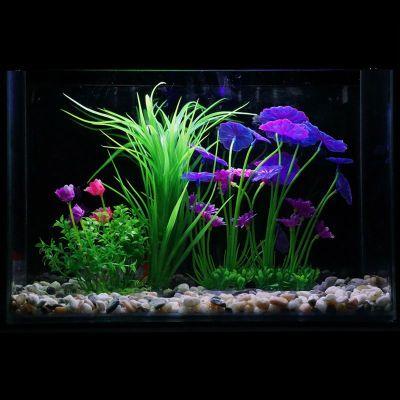 夜光石彩石头壁挂鱼缸热带鱼玻璃圆形竹子水草植物鱼缸鱼护地插金