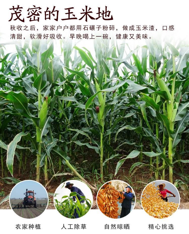 新货东北玉米碴黄粘玉米碴5斤白粘碴小碴子玉米苞米茬子玉米糁