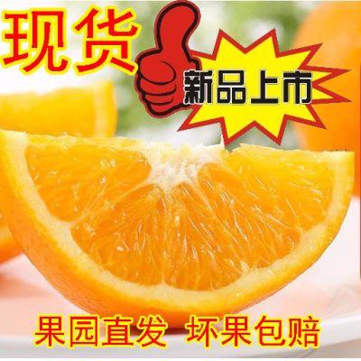 赣南脐橙 一级果新鲜水果孕妇手剥橙江西赣州特产甜橙子多汁5斤