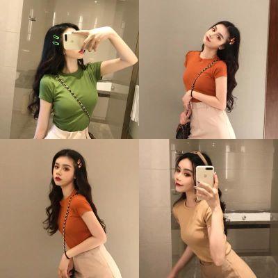 复古chic初秋长袖上衣女夏2018新款韩版修身显瘦网红同款短袖T恤