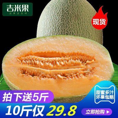 新疆哈密瓜10斤批发新鲜当季网纹瓜时令水果吐鲁番西州蜜瓜甜香瓜