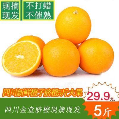 现摘四川金堂脐橙新鲜水果5/9斤酸甜橙孕妇水果冰糖橙非爱媛38号