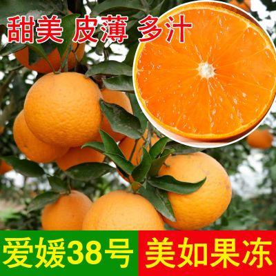 果园直发精品爱媛38号果冻橙 手剥橙子8斤/5斤 75-90mm非赣南脐橙
