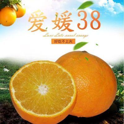2.5/5斤大果四川浦江爱媛38号果冻橙手剥橙红美人柑橘新鲜桔子