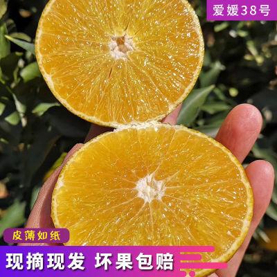 爱媛38号果冻橙3斤/5斤果径60-80mm四川橙子手剥橙非赣南脐橙水果