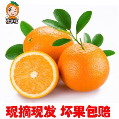 【橙掌柜】江西正宗赣南脐橙新鲜橙当季水果孕妇超甜薄皮现摘包邮