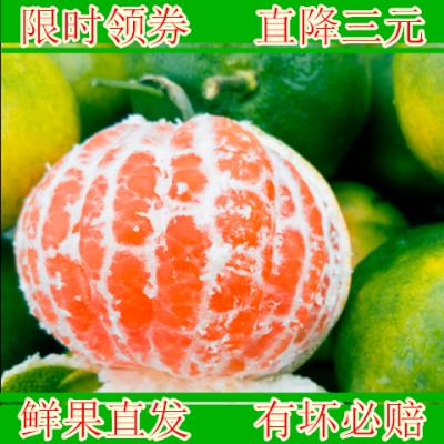 【五斤】新鲜湖北酸甜蜜桔青黄爆汁薄皮橘子鲜果直发桔子45~65mm