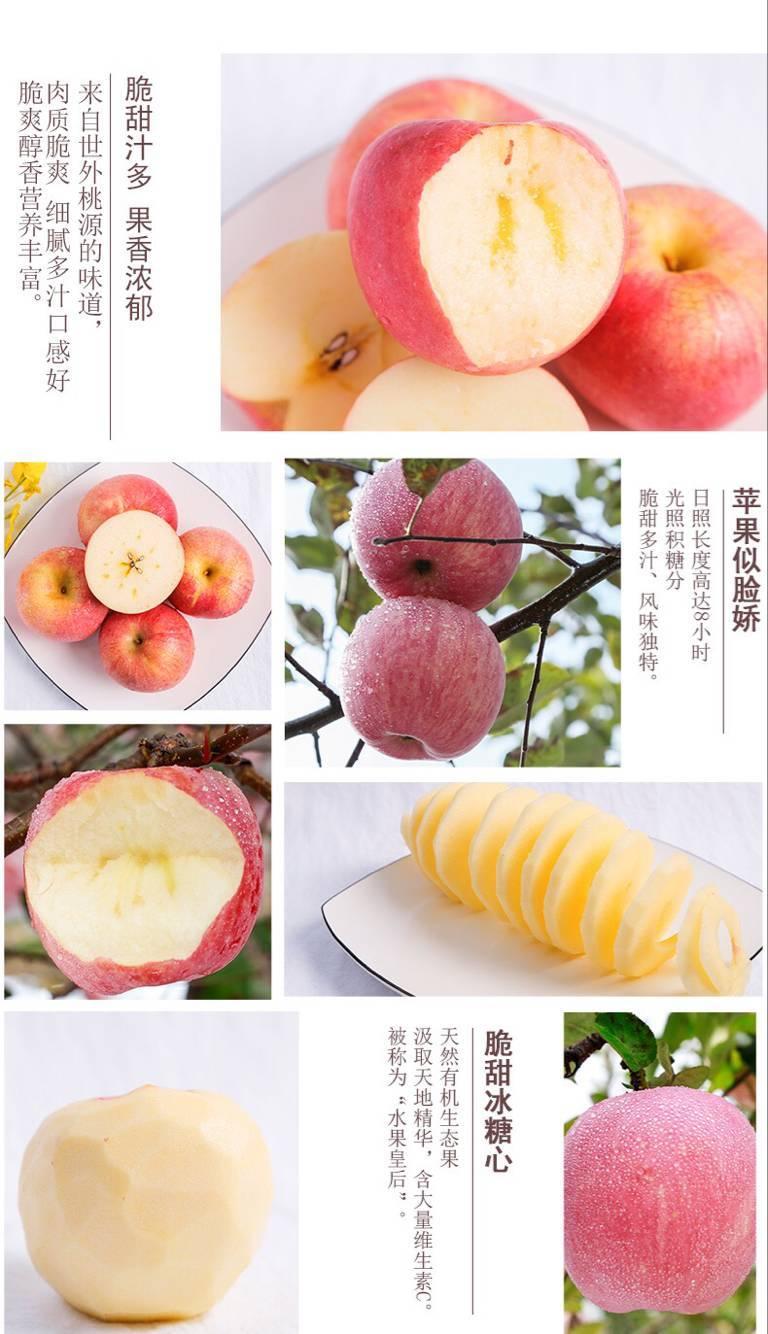 【冰糖心10斤装礼盒箱】现摘水果红富士苹果新鲜当季批发包邮一整带箱