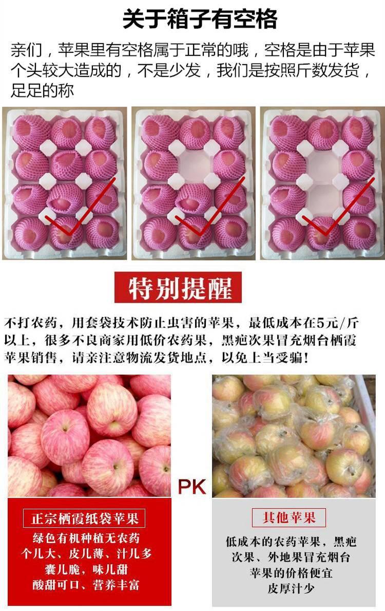山东烟台栖霞红富士苹果3/5斤新鲜水果不打蜡非阿克苏冰糖心 脆甜