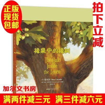 正版  陆可铎你很特别系列之:《橡果中的橡树》 5—10岁绘本