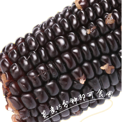 【黑糯玉米】新鲜现采摘玉米棒真空嫩甜粘糯营养黑糯玉米粗粮
