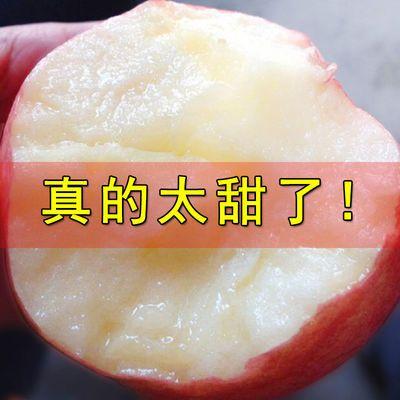 【现摘】红富士苹果正宗冰糖心脆甜10斤新鲜水果当季5斤批发整箱