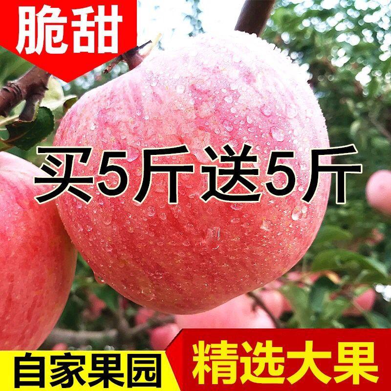 48小时内发货-陕西冰糖心红富士苹果新鲜水果苹果10斤(果经70mm-90mm)包甜脆