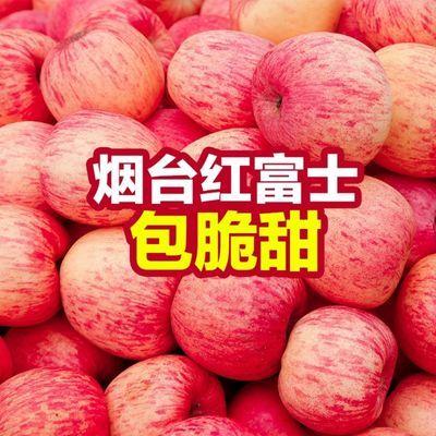 山东烟台栖霞红富士苹果脆甜新鲜水果3/5/10斤孕妇冰糖心批发整箱