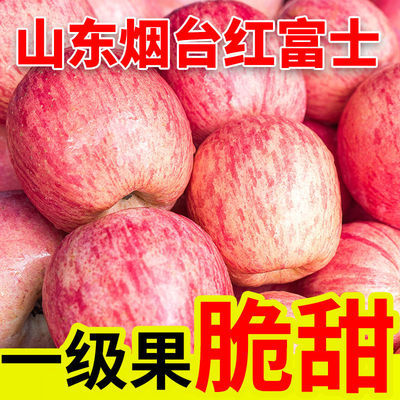 山东烟台栖霞红富士苹果当季新鲜水果脆甜多汁5斤/10斤包邮