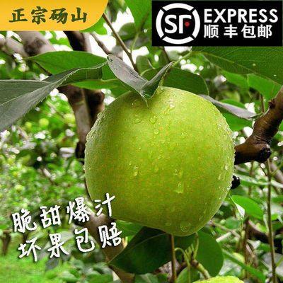 【顺丰现货】砀山青皇冠梨白皇冠梨随机发货梨子水果批发汤山梨