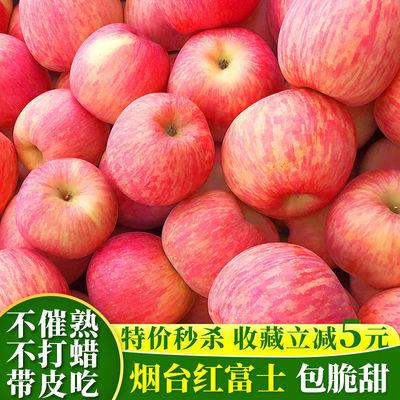 烟台栖霞红富士苹果当季新鲜水果5斤整箱批发 脆甜平果多汁不打蜡