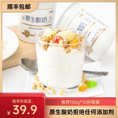 原生酸奶整箱批发原味无添加剂儿童益生菌酸牛奶乳酸菌180g*10杯