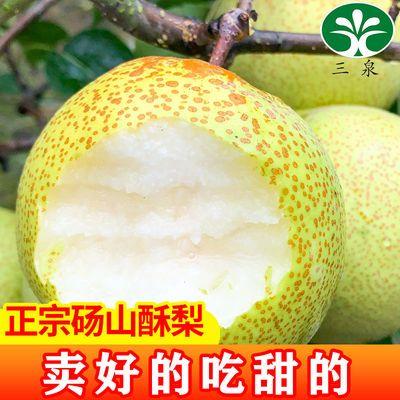 砀山酥梨10/5/2斤当季新鲜水果脆甜可口坏果包赔非皇冠梨雪花梨