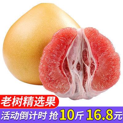 【老树精品果】正宗福建平和�g溪红心蜜柚红肉柚子新鲜水果农家