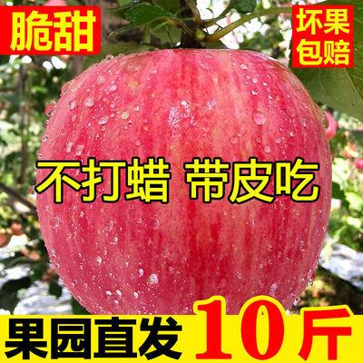 陕西脆甜高原红富士苹果当季应季新鲜水果2-10斤整箱冰糖心丑苹果