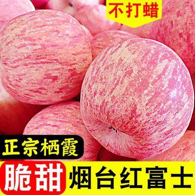 山东烟台栖霞红富士苹果应季水果新鲜整箱批发脆甜10斤/5斤/3斤