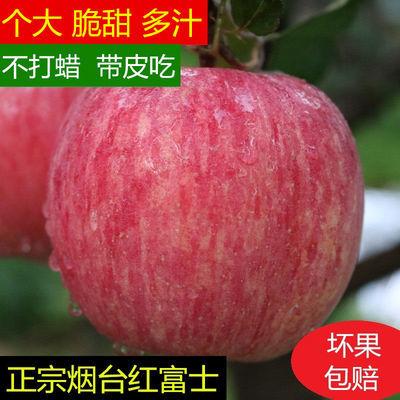 新鲜苹果烟台苹果烟台红富士苹果山东烟台红富士苹果3/5/9/10斤