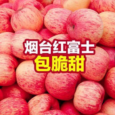山东烟台栖霞红富士苹果脆甜新鲜水果3/5/10斤孕妇冰糖