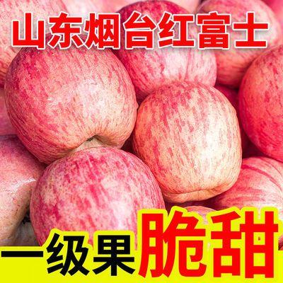 山东烟台栖霞红富士苹果当季新鲜水果脆甜多汁5斤/10斤产地包邮