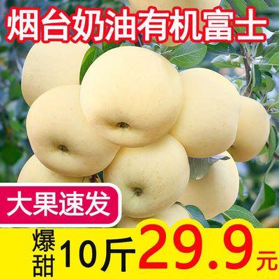 奶油富士苹果水果新鲜10牛奶黄金白丑冰糖心5斤山东烟台应季整箱