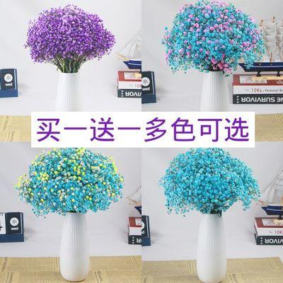 买一送一云南干花满天星花束家居装饰天然干花勿忘我百搭天然真花