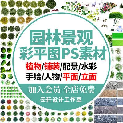 园林景观彩平图PSD素材植物手绘辅装PS后期立面平面图设计效果60