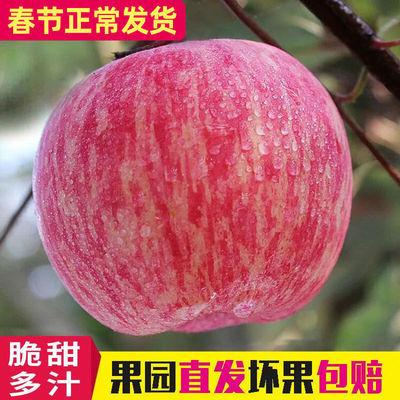 陕西冰糖心红富士苹果水果应季新鲜水果脆甜10斤装整箱批发丑苹果
