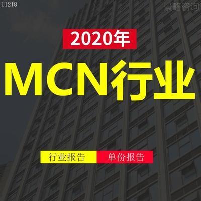 2020年中国MCN行业技术内容用户生产端商业化产业市场研究报告yz