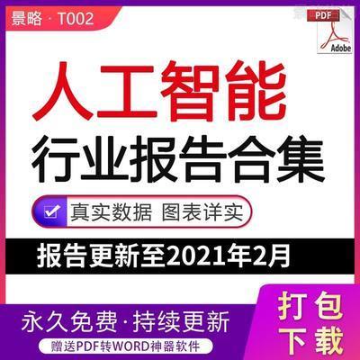 2021年中国人工智能行业研究报告AI产业市场用户技术白皮书合集fj