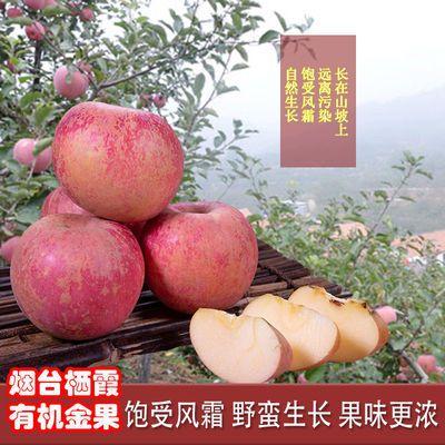 烟台栖霞自然生长有机金果蔬批发正宗红富士锈丑苹果水果甜脆多汁