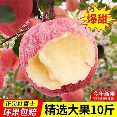山东烟台栖霞红富士苹果水果新鲜一级包邮斤当季整箱糖心脆萍平果