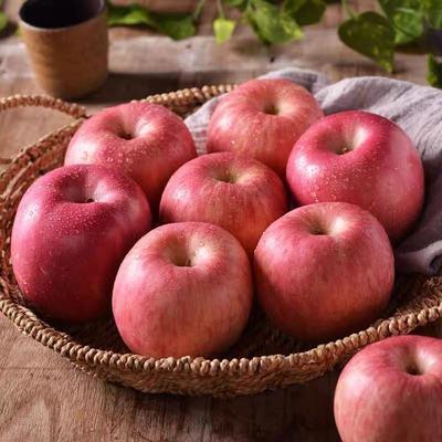 山东烟台苹果栖霞红富士脆甜新鲜水果正宗当季冰糖心整箱一级包邮