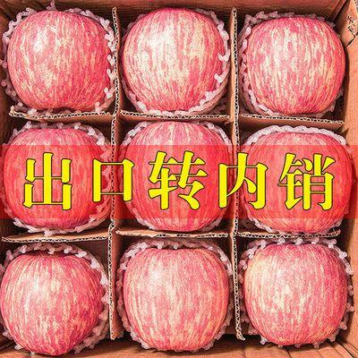 【脆甜多汁】山东烟台栖霞苹果正宗红富士当季新鲜水果3斤5斤10斤