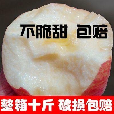 【冰糖心】新鲜红富士苹果丑苹果现摘新鲜苹果水果1/5/10斤包邮果