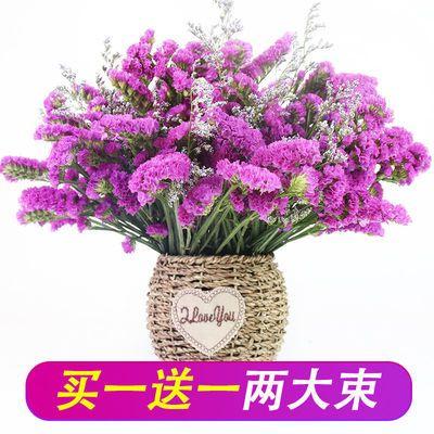 勿忘我满天星干花花束鲜花真花批发花瓶干花插花客厅摆设家居装饰