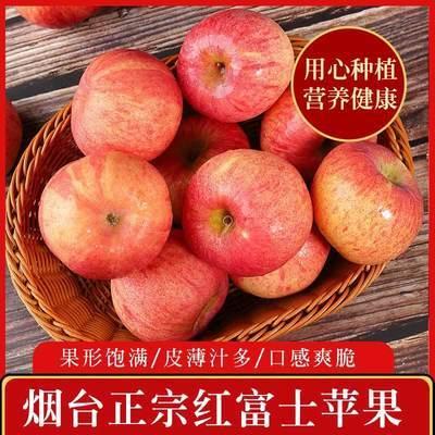 烟台栖霞苹果红富士水果新鲜脆甜正宗冰糖心3斤/5斤山东特产批发
