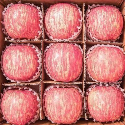 山东烟台栖霞苹果正宗红富士当季新鲜水果丑苹果3/5/10斤整箱批发