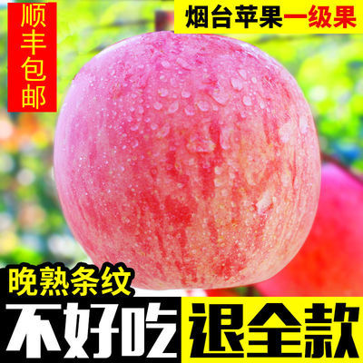 烟台红富士苹果水果新鲜脆甜一级山东栖霞当季3斤5斤10斤顺丰包邮