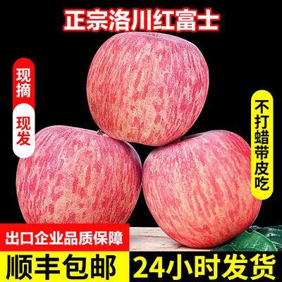 陕西洛川红富士苹果水果正宗脆甜冰糖心新鲜现摘水果10斤批发包邮