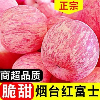 正宗山东烟台栖霞红富士苹果。脆甜,条纹富士。果农直发。包邮。
