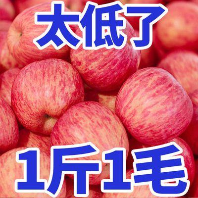 【爆甜】苹果红富士应季新鲜水果整箱5/10斤批发价平果非山东烟台