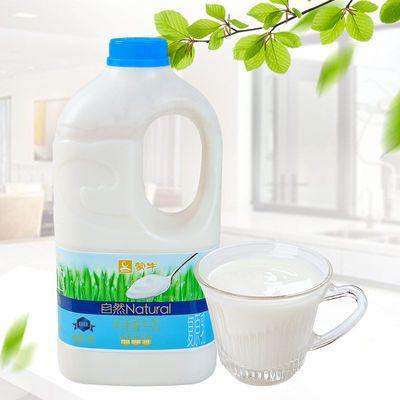 蒙牛自然原味大桶量贩装酸奶1.1KGX1桶复原乳发酵水果捞儿童早餐