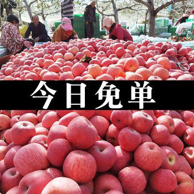 陕西冰糖心丑苹果红富士应季孕妇水果新鲜脆甜2/5/10斤整箱批发