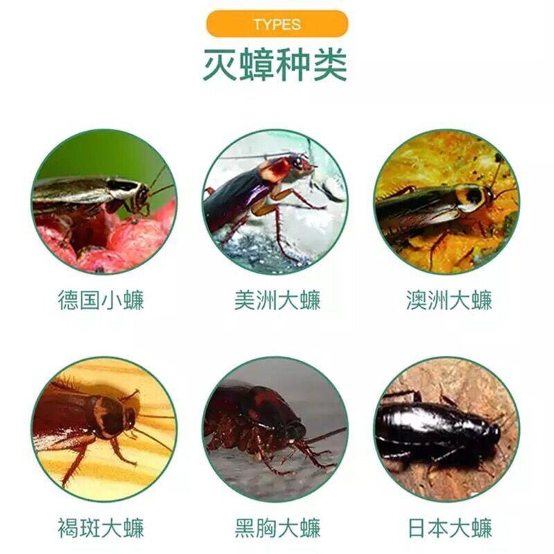 强力蟑螂药灭蟑清低毒家用安全强效无毒灭蟑螂药粉杀除蟑螂全窝端